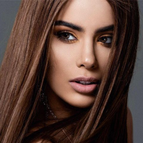 Ariadna Gutierrez is a model and actress.