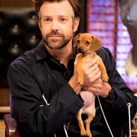 Jason Sudeikis is an Emmy Award Winner , American actor, comedian, writer, and producer.
